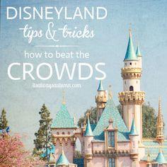 disneyland tips&tricks: beat the crowds - itsalwaysautumn - it's always autumn