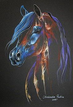 Bay arabian horse by Paulina Stasikowska - Karen Beech - - Bay arabian horse by Paulina Stasikowska Bay arabian horse by Paulina Stasikowska Pretty Horses, Horse Love, Beautiful Horses, Horse Drawings, Animal Drawings, Art Drawings, Arte Equina, Horse Artwork, Horse Pictures
