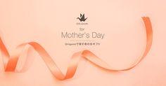 Origamiで探す母の日ギフト | Origami