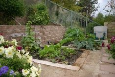 Wonderful blog site for growing vegetables in the winter.