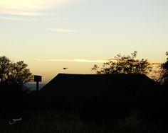 Jabulani Game Reserve in Parys, South Africa