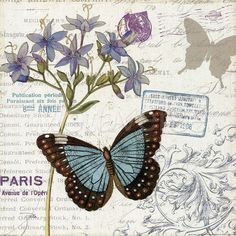 Trademark Fine Art 'Papillon Tales II' Canvas Art by Pela Studio, Size: 35 x Gray Vintage Cards, Vintage Paper, Vintage Images, Vintage Butterfly, Butterfly Art, Butterflies, Image Deco, Shabby, Decoupage Paper