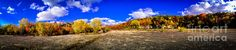 Fall All Around by Mark David Zahn Photography. The colors of fall are popping all along the cliffs of the Niagara escarpment at High Cliff State Park near Sherwood, Wisconsin. The leaves on the trees are positively gorgeous in person at this time of year. This panormic print was taken with the panorama mode on an iPhone 4s with iOS 6.