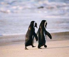 true love <3