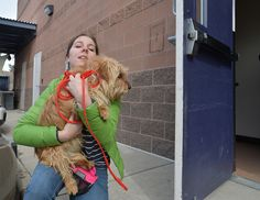 In Boulder County and beyond, a new era dawns for measuring success in animal sheltering
