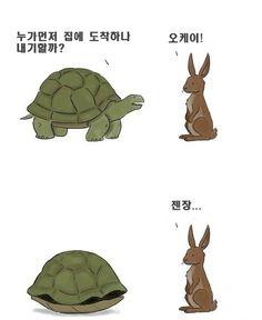 토끼와 거북이
