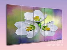 #SPRING #FLORAL - #PANEL #ART by #Kaye #Menner #Photography Quality Prints, Cards and more at: http://kaye-menner.artistwebsites.com/featured/spring-floral-panel-art-by-kaye-menner-kaye-menner.html