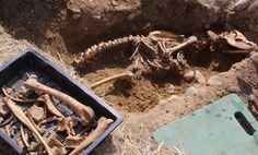Arqueólogos descobrem esqueletos do temido ''cão do inferno'' de 2 metros de altura perto de antigo monastério no Reino Unido ~ Sempre Questione - Últimas noticias, Ufologia, Nova Ordem Mundial, Ciência, Religião e mais.