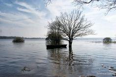 Lac de Grand lieu Pierre aigue