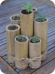 leftover bamboo used for herbs, flowers, gifts....