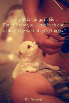 Enjoy little things in life.. For one day you'll look back and realize they were the big things.