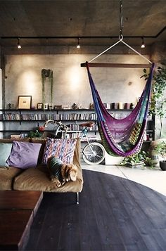 this is undoubtedly my dream home. Every single thing is perfect. Concrete, shelving, cool flooring, hammock, cute dog, bike, plants, comfy couch...the list goes on and on.