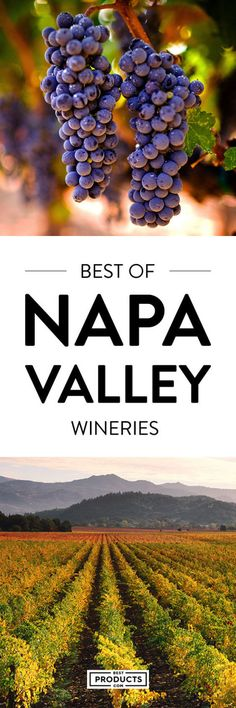 The Napa Valley, north of San Francisco, is home to more than 200 wineries, ranging from boutique vineyards to sprawling estates. In addition, this insanely scenic 30-mile stretch of California Wine Country (primarily along Route 29), is dotted with farm-to-table restaurants and romantic inns — so if you're planning a visit to Napa Valley wineries, add these eight to your list.