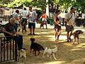 Tompkins Square Park Dog Run