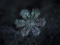 Snowflake n.1937057371046175 in 55° 45′ 0″ N, 37° 37′ 0″ E at 2013.03.25 09.42:49