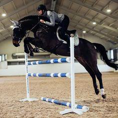 Training makes perfect! #equestrianstockholm #horse #showjumping Equestrian Stockholm now in stock at Equestrian Performance!