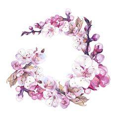 CanaanTse собраны цветы иллюстрация
