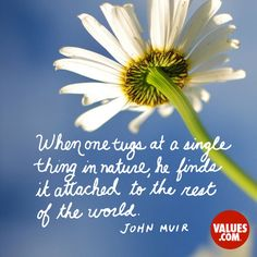 An inspiring quote by John Muir about #unity #passiton www.values.com