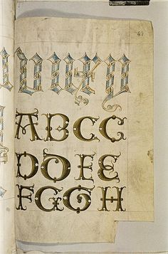 A scroll alphabet. c - from the Bodleian MS. Ashmole 1504 ('The Tudor Pattern Book'), is unique in the sense that it is part-bestiary, part-herbal and an important visual record of early cultivated plants. It was produced in East Anglia in about 1520 and its twin (known as the 'Helmingham Herbal and Bestiary' and perhaps a little older than the Ashmole variant) is now part of the Yale Center for British Art collection in Newhaven, Connecticut.