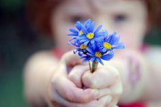 Dicas para ensinar gratidão às crianças (árvore, livro, jogo e mais)
