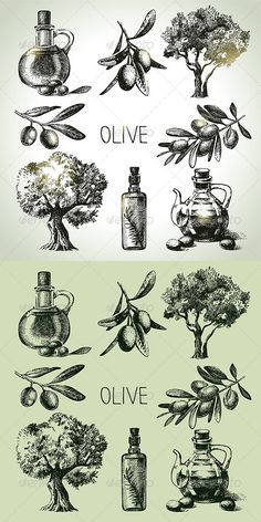 Olive Hand Drawn Set #GraphicRiver Set of hand drawn vintage olive icons. This illustrations can be used in design of printed materials (brochures, invitations, postcards), in web design etc. No bitmaps, only vector used. Zip file contains fully editable EPS 8 vector file, AI CS vector file and high resolution pixels RGB Jpeg image. Contains the author's non-editable text. Created: 22September13 GraphicsFilesIncluded: JPGImage #VectorEPS #AIIllustrator Layered: