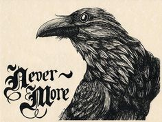 Quoth the Raven Nevermore PRINT of ORIGINAL Pen and Ink DRAWING on Parchment Paper