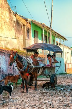 Trinidad, Cuba. You often see horse drawn carts on the road as most local people cannot afford cars.
