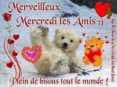 Horoscope Tarot, Miséricorde Divine, Good Wednesday, Happy Friendship Day, Good Morning, Teddy Bear, Dom Tom, Collage, Days Of Week