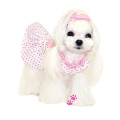 PINK DOTS DOG DRESS