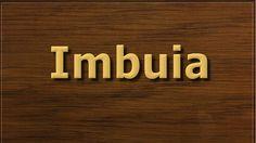 Na lista de madeiras em risco de extinção a Imbuia sempre esteve na lista das favoritas dos marceneiros.…