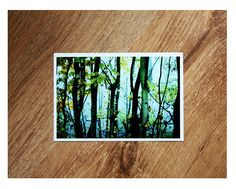 Jungle Forest 4x6 Photo van fritzifranzen op Etsy, €6.00
