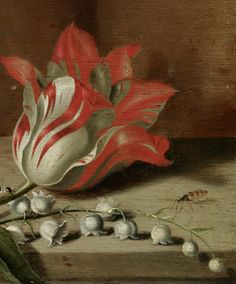 ".:. Jacob Marrel (1634) ""Still life with a tulip, anemones, lily-of-the-valley, caterpillar, butterfly and other insects on a wooden ledge'"