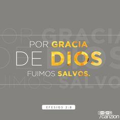 «Dios los salvó por su gracia cuando creyeron. Ustedes no tienen ningún mérito en eso; es un regalo de Dios». —Efesios 2:8