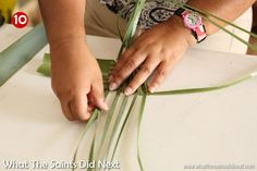 Flax weaving by hand to make a harakeke flower. This design is for an arum lily aka a calla lily. Flax Weaving, Basket Weaving, Flower Arrangement Designs, Flower Arrangements, Coconut Leaves, Flax Flowers, Weaving Process, Weaving Patterns, Leaf Art