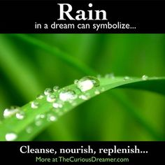 Rain as a dream symbol can mean... More at TheCuriousDreamer...#dreammeaning #dreamsymbols