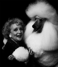 A glorious standard poodle, embracing Betty White.