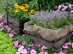 Explore ideas for country landscaping. Learn about country landscape design from the experts at HGTV Gardens.