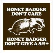 we LOVE the honey badger!!!