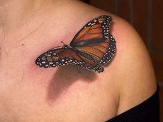 1. Un papillon et son ombre