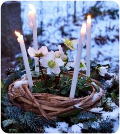 Winter Solstice altar to celebrate the significance of this midway point between winter and spring. Now, the days begin to grow longer and barren trees stir with new life. In a few short weeks, we'll see all forms of new life emerge Samhain, Mabon, Yule, Beltane, Imbolc Ritual, Fire Festival, Beginning Of Spring, Early Spring, Deco Nature