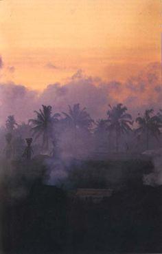 misty Ubud