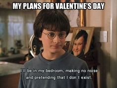 My plans for Valentine's Day.