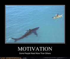 """4'《《 ¡ chuckled a little more than i should have the first time i saw this! 《《 """"funny motivational posters = ``·. ! ^¤_~ ··. """"\ ... , shark, demotivational, posters, humor, jokes, comedy, funny, """"\o/'~"""