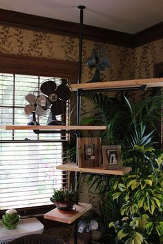 Itsy Bits and Pieces: More From The Bachman's Summer 2011 Ideas House...