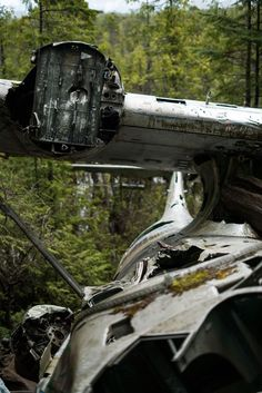 How to Hike to the Crashed Bomber Plane in Tofino, BC – Let's Go Left Hiking Tips, Hiking Gear, Tofino Bc, Bomber Plane, Best Hikes, Vancouver Island, Canada Travel, Oh The Places You'll Go, Far Away