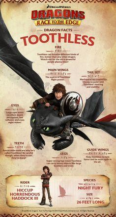 Httyd Dragons, Cool Dragons, Dreamworks Dragons, Dragon Facts, Dragon Memes, Dragon Wolf, Dragon Rider, Dragon Defender, Toothless Dragon
