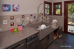 Contemporary Laundry Room by Designs Dell'Ario Interiors - 15 Doggone-Good Tips for a Pet Washing Station