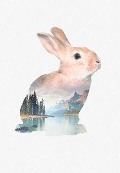 Faunascape - greeting card - Bunny
