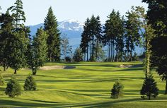 Crown Isle Resort, Golf Community and Homes in Comox Valley, Courtenay - Vancouver Island Wonderful Places, Great Places, Amazing Places, Real Estate Search, Vancouver Island, Mountain View, How Beautiful, British Columbia, Cool Places To Visit