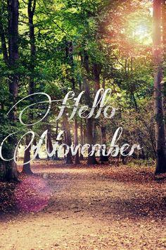 November noviembre